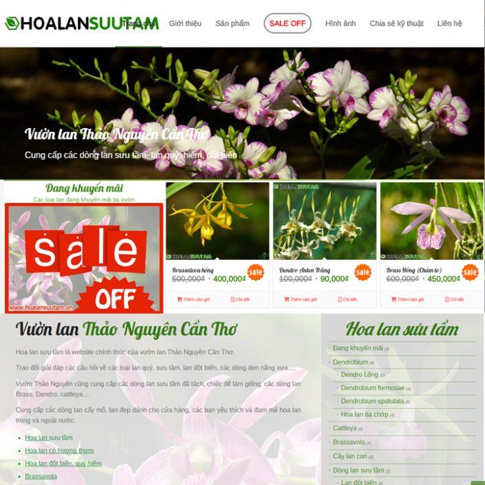 Thiết kế website bán hoa lan